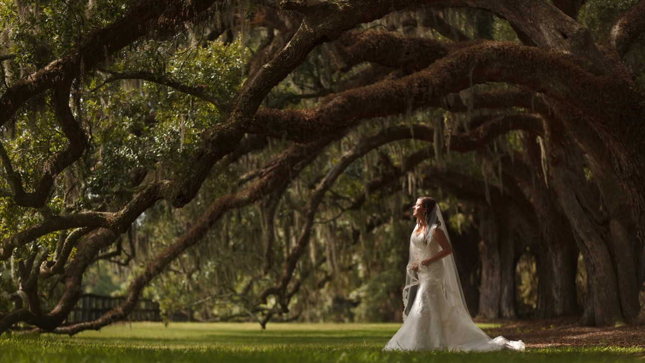 Magnolia Plantation Wedding | Thomas + Chelsey | Charleston, SC