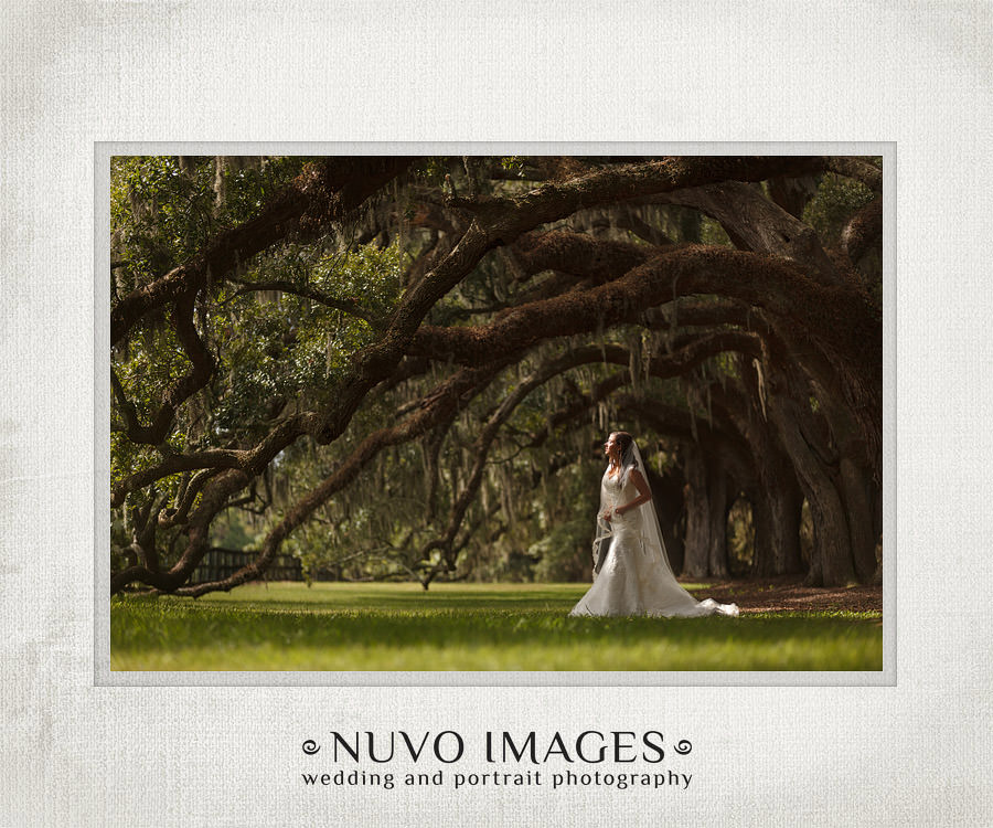 magnolia_plantation_wedding_02