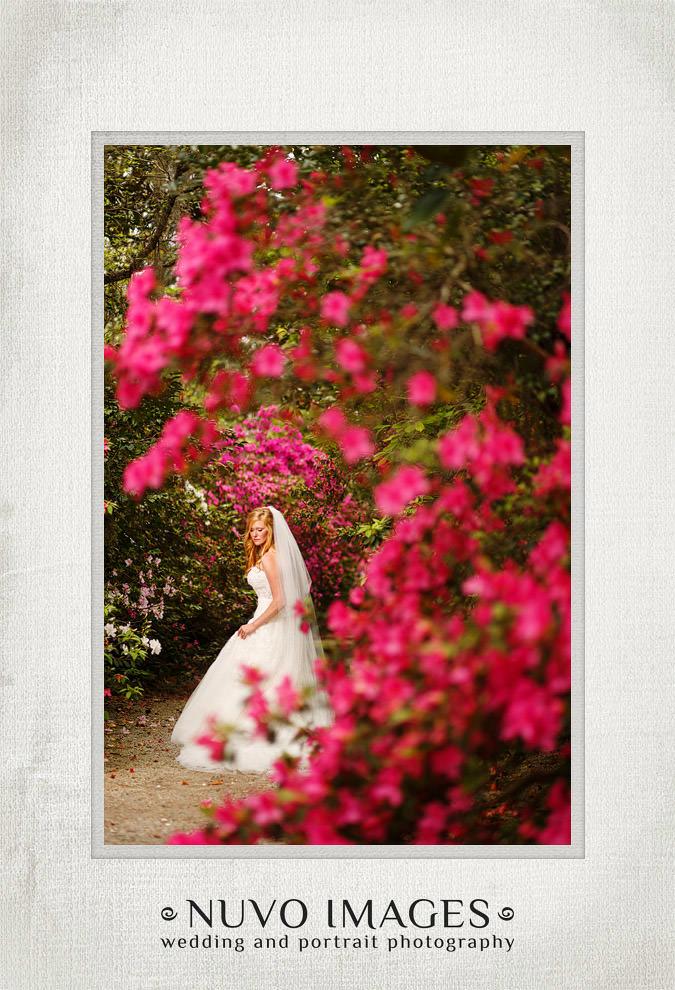 charleston-weddings-15