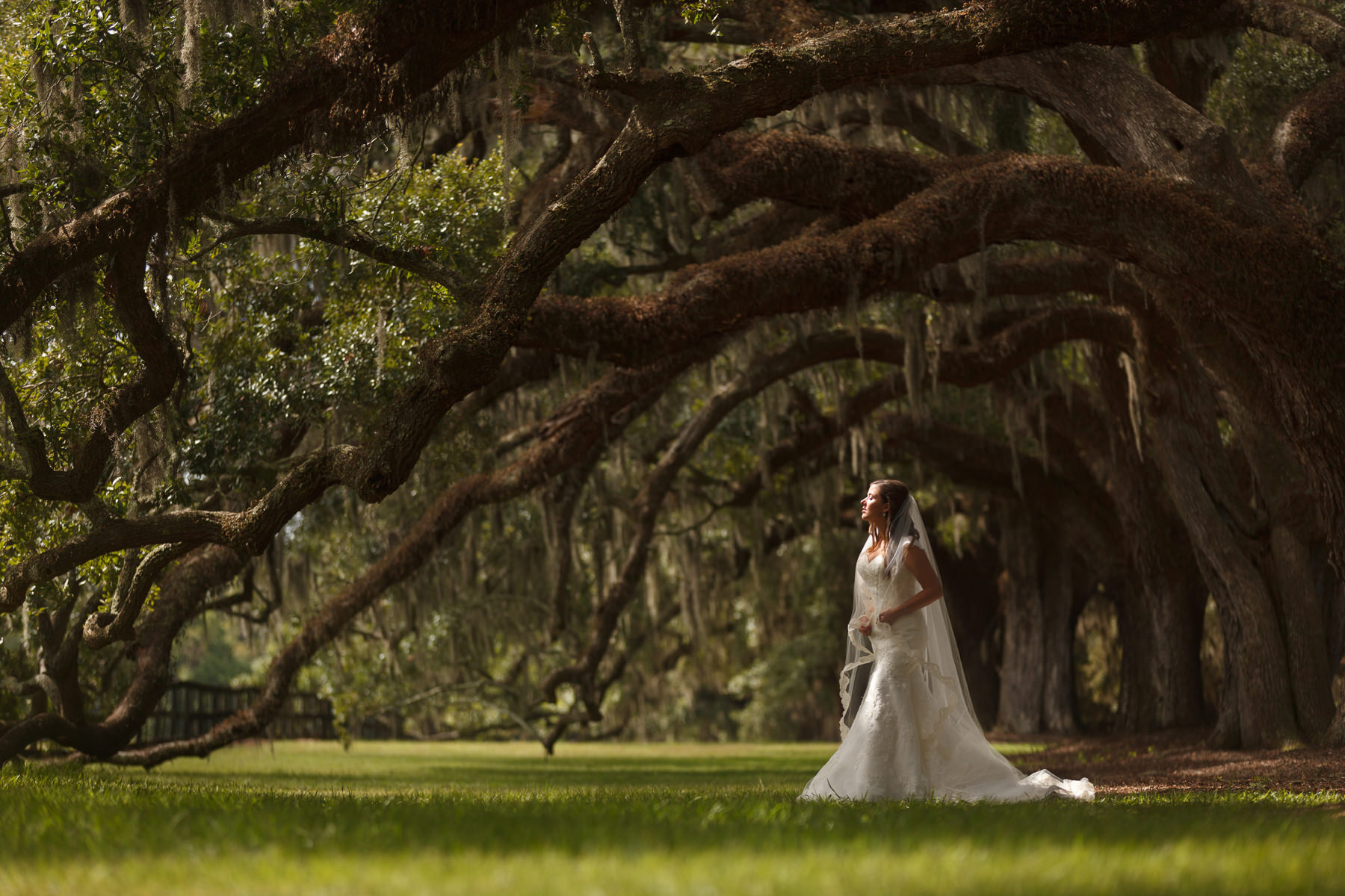 Magnolia Plantation Wedding | Nuvo Images