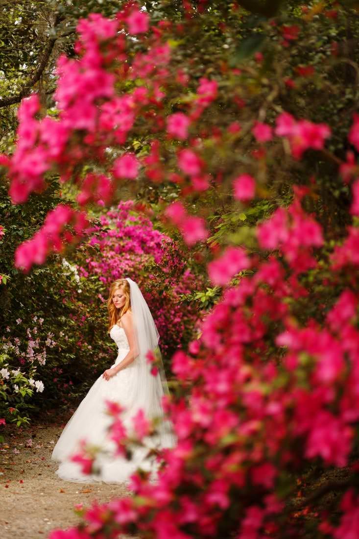 charleston-wedding-photographers-nuvo-images-184
