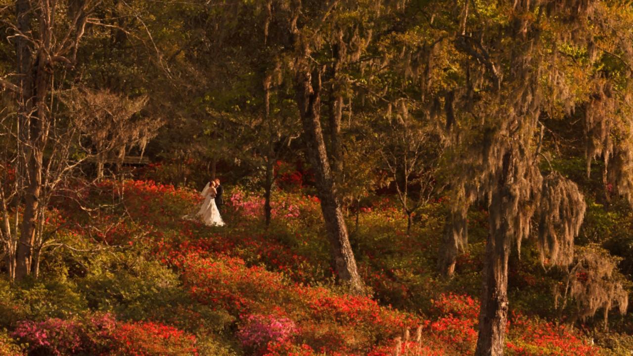 Middleton Wedding | Amanda + Stephen | Charleston, SC